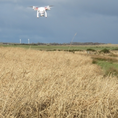 Aerial Drone Surveying