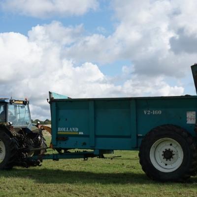 Green Hay Strewing
