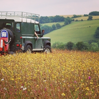 Harvesting in the Cotswolds