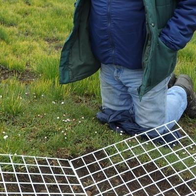Surveying Walltown Farm